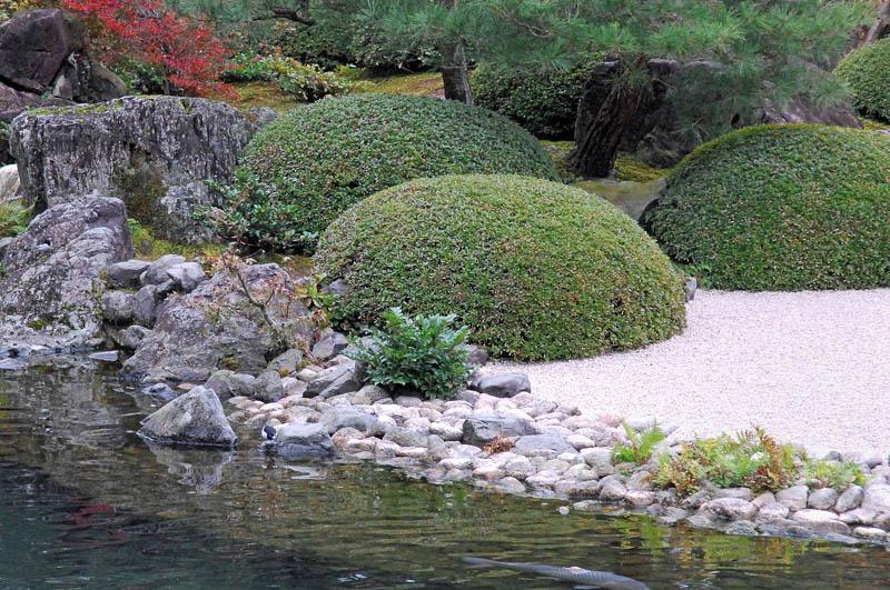 番外 足立美術館庭園のセキレイ_b0024798_10141646.jpg