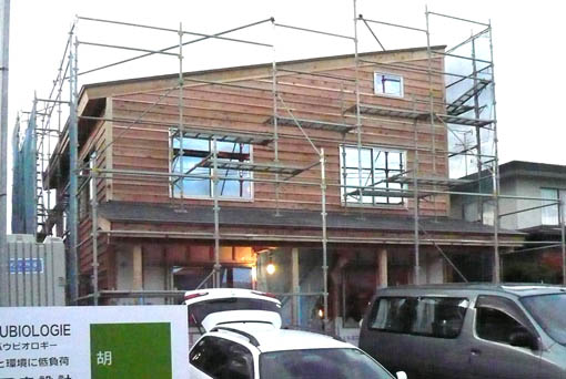 Q1新屋の家03 : 板張り、塗装、断熱施工_e0054299_13183916.jpg