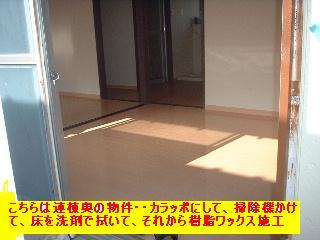f0031037_20125844.jpg
