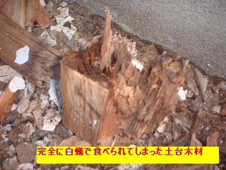 f0031037_2014351.jpg