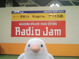 CBCラジオ・ロック☆フェス!! in ナガシマスパーランド_e0013944_4304852.jpg