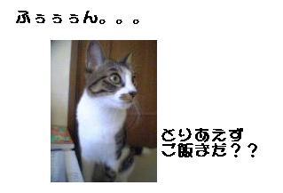 b0022595_11343445.jpg