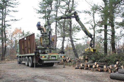 松食い虫の被害木の黒松の搬出_e0054299_10274081.jpg