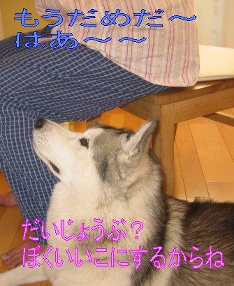 f0112407_249420.jpg