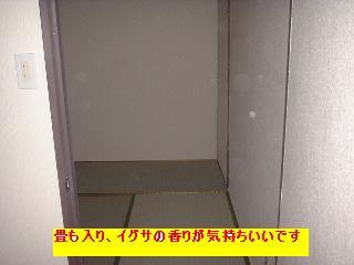 f0031037_21292788.jpg