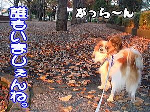 f0011845_02844100.jpg