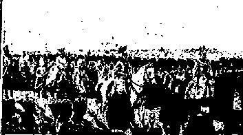f0028703_223594.jpg