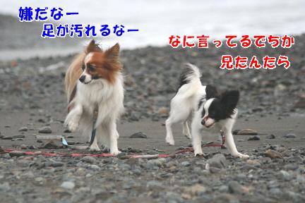 d0013149_01672.jpg