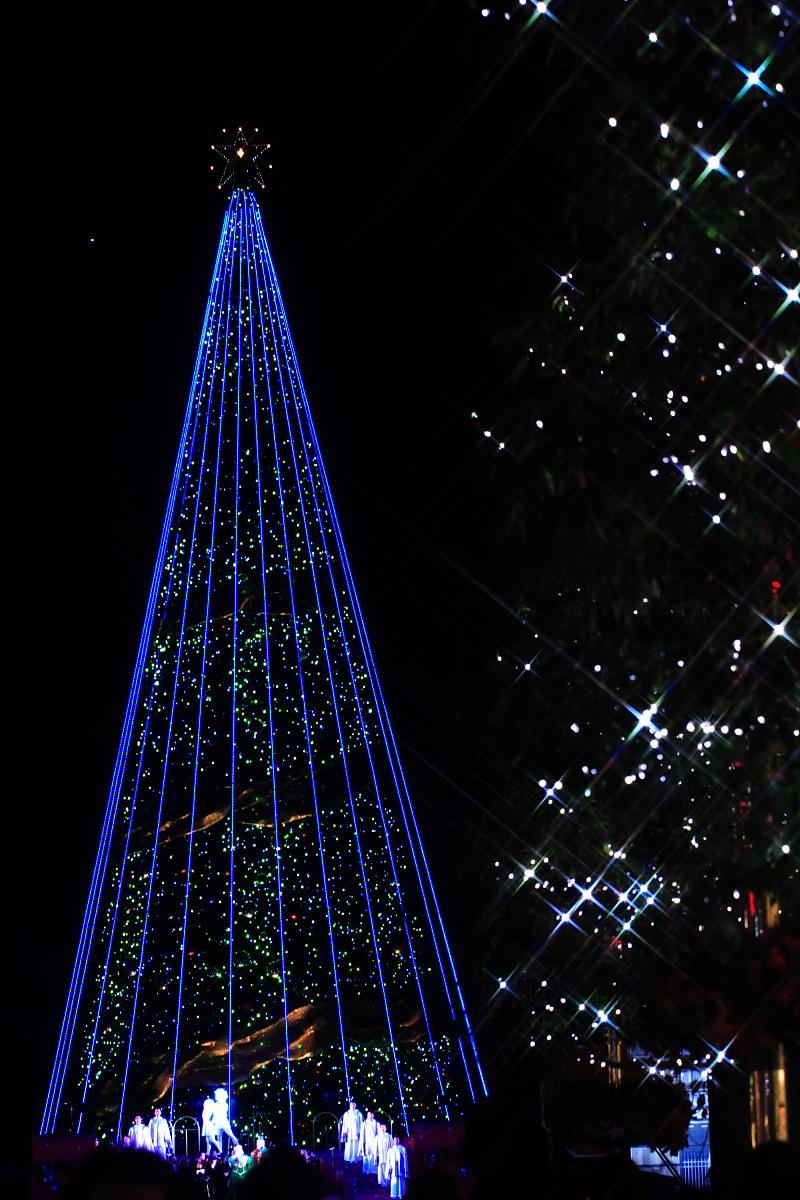 ユニバーサル・ワンダー・クリスマス 3_f0021869_992530.jpg