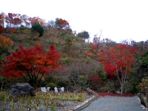 紅葉も終わりに。_f0085369_22183172.jpg