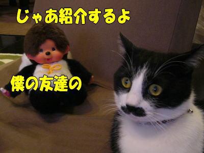 b0041182_20142387.jpg