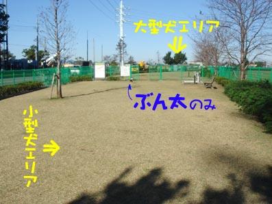 c0094999_520231.jpg