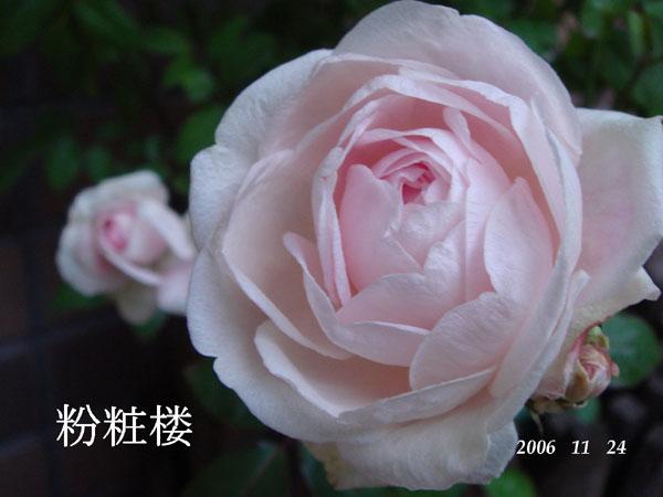 f0057006_15581885.jpg