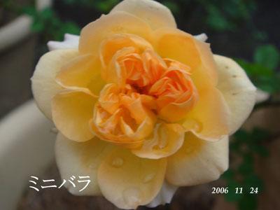 f0057006_15583472.jpg