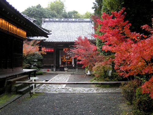 赤山禅院_e0048413_2255324.jpg
