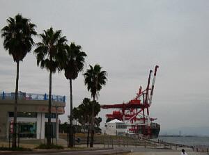椰子の木の生えた海辺、海側に面してキリンの立ち姿のように見えるクレーンが、何機か並んでいるようす。
