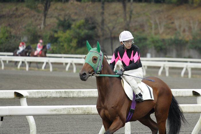 2006年11月19日(日) 高知競馬 1R_a0077663_185332.jpg