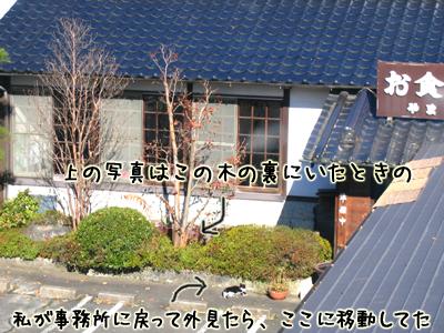 f0044171_12304269.jpg