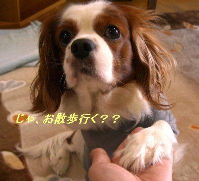 b0021297_23281998.jpg