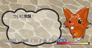 b0027699_60921.jpg
