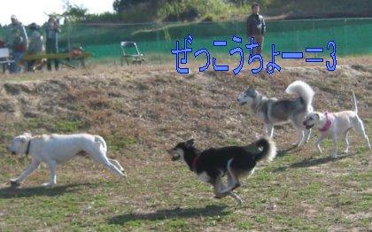 f0112407_23124129.jpg