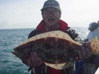 太刀魚~平目_f0031613_19271170.jpg