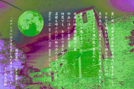 b0088524_221392.jpg