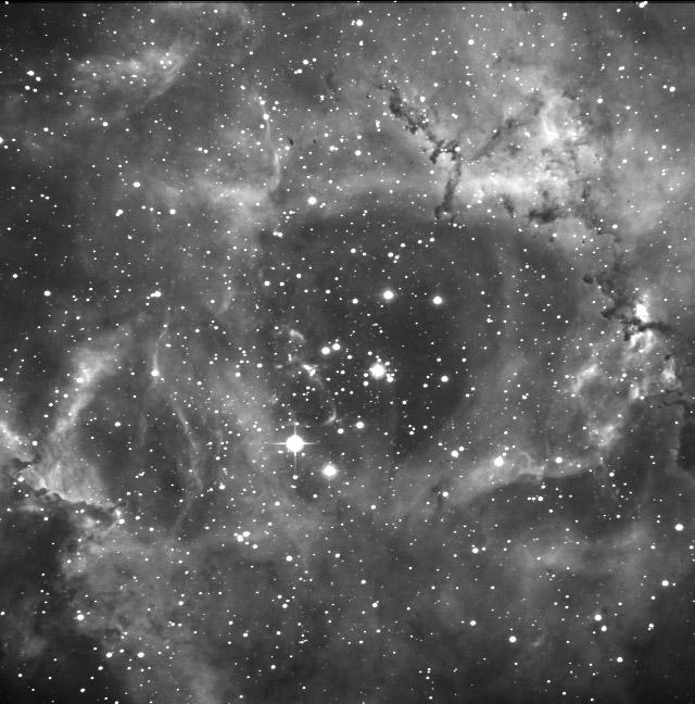 NGC2237(バラ星雲)_c0061727_22423076.jpg