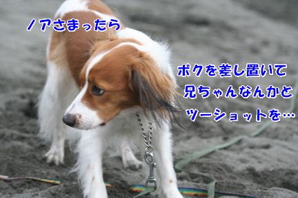d0013149_0134057.jpg