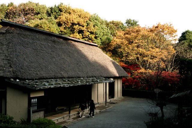 日本民家園の紅葉_f0044056_17564274.jpg