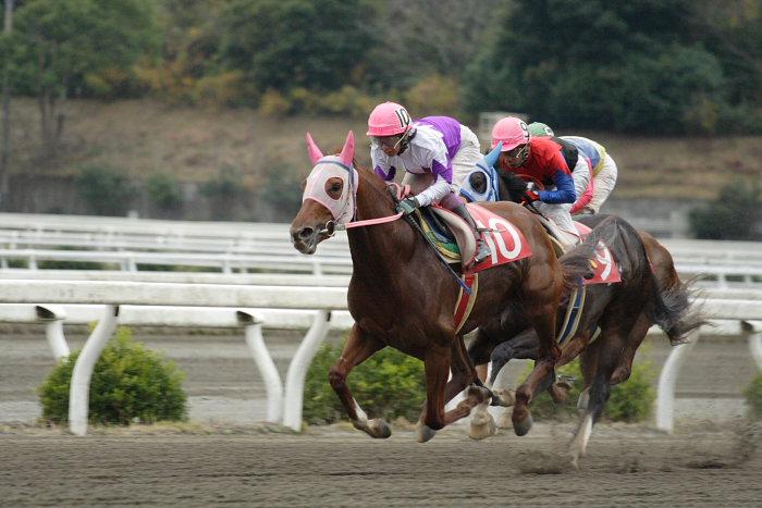 鷹野宏史騎手、通算勝利2100勝達成!!_a0077663_19102156.jpg