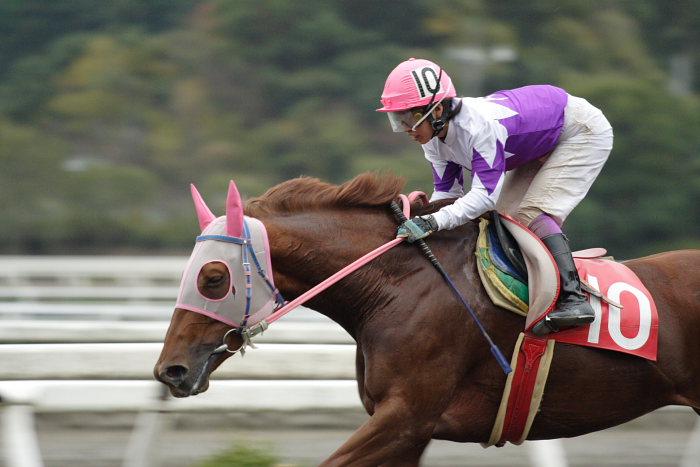 鷹野宏史騎手、通算勝利2100勝達成!!_a0077663_19121199.jpg