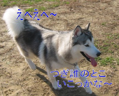 f0112407_093452.jpg