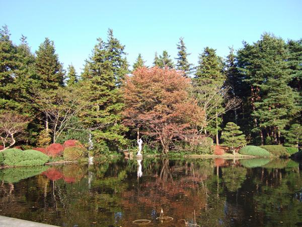 神代植物園の秋_f0012718_21421757.jpg