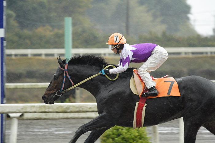 2006年11月26日(日) 高知競馬 6R_a0077663_21523238.jpg