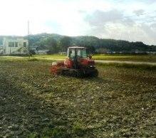 冬小麦の種まき開始!!_b0105711_14164443.jpg