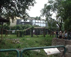 中国閑話 北京動物園のパンダ専用入り口?_a0084343_13452210.jpg