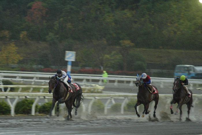 2006年11月26日(日) 高知競馬 10R_a0077663_1816393.jpg
