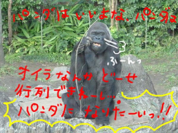 c0102466_21395345.jpg
