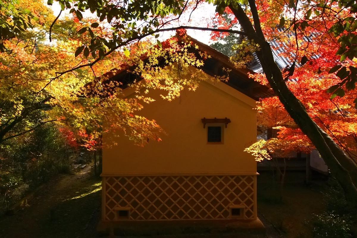 京都 高尾 <西明寺> 紅葉 2_f0021869_23583738.jpg