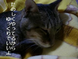c0103205_1934356.jpg