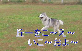 f0112407_0311988.jpg