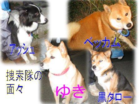 f0112407_204613.jpg