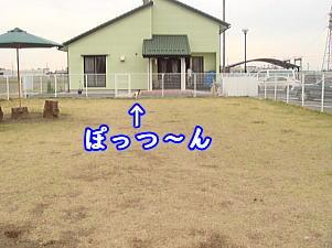 f0011845_0184515.jpg