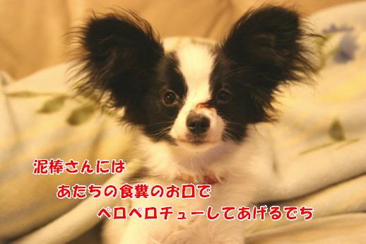 d0013149_05163.jpg