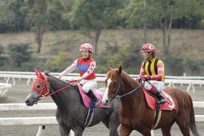 2006年11月25日(土) 高知競馬 まだまだ元気なオースミレパード_a0077663_4364128.jpg