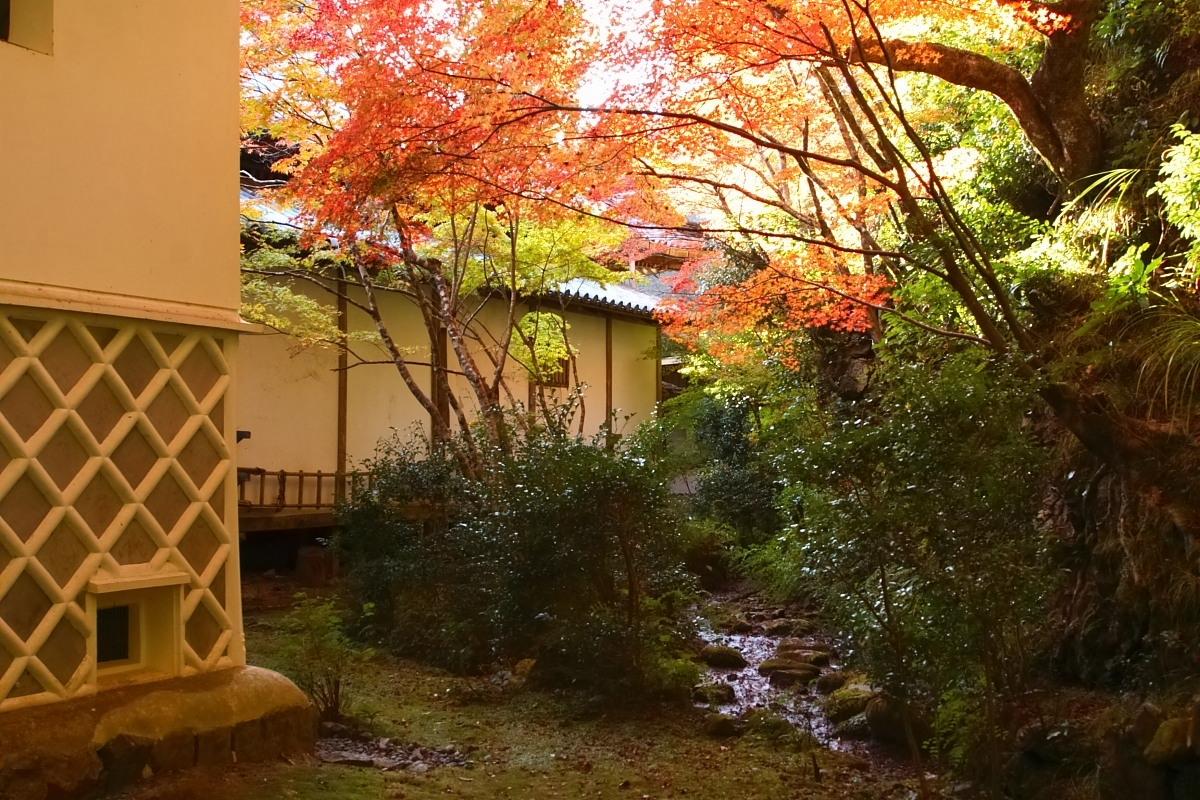 京都 高尾 <西明寺> 紅葉 2_f0021869_0113753.jpg