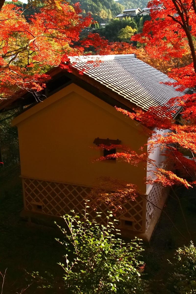 京都 高尾 <西明寺> 紅葉 2_f0021869_0141653.jpg