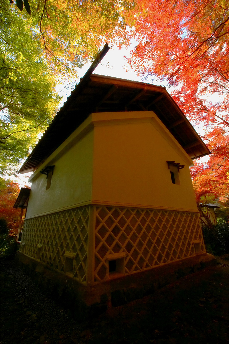 京都 高尾 <西明寺> 紅葉 2_f0021869_034558.jpg