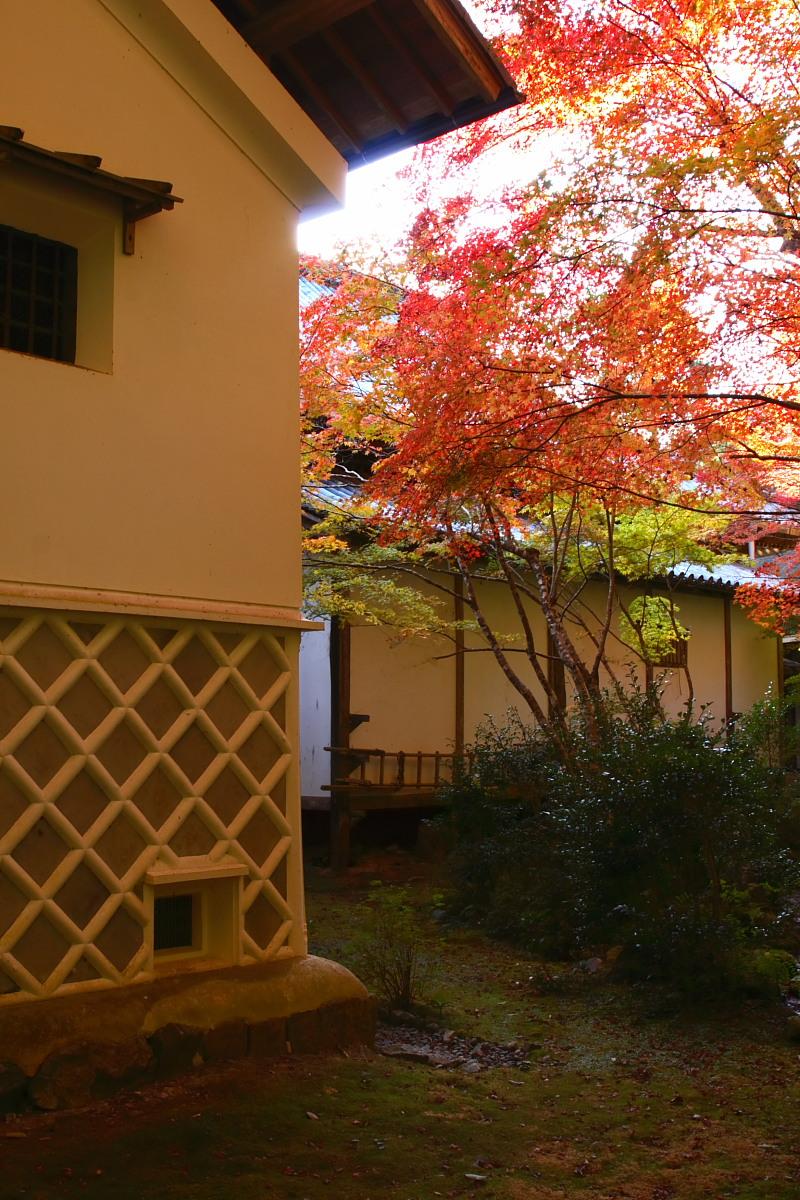京都 高尾 <西明寺> 紅葉 2_f0021869_091776.jpg